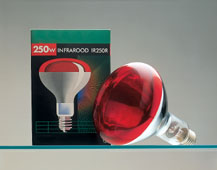 All Products - Gloeilamp Ir 250