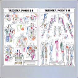 The Grid / Triggerpoint - Trigger Points I & II