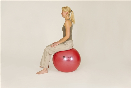 Sissel - Securemax exercise ball - zitbal - 55cm - rood